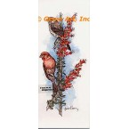House Finches  - #COR125  -  PRINT