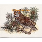 Owl In Branch  - COR52  -  PRINT