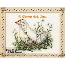 Country Geese  - #COR96  -  PRINT
