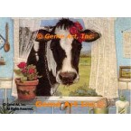 Cow At Window  - ZOR308  -  PRINT