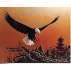 Eagle In Flight  - QOR2  -  PRINT