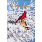 Cardinals In Snow  - #MOR620  -  PRINT
