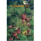 Golden Crown Kinglets  - #MOR626  -  PRINT