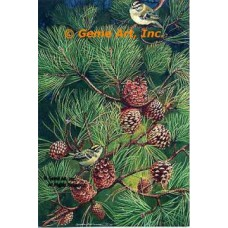 Golden Crown Kinglets  - #MQ626-9  -  Set of 6 Prints 8x12""