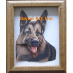 German Shepherd Project #IOR103