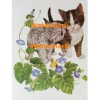 Playful Cats  - #XS2741  -  PRINT