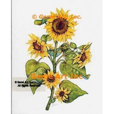 Sunflowers  - WOR112  -  PRINT