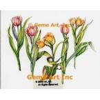Shall We Dance? Tulips  - WOR123  -  PRINT