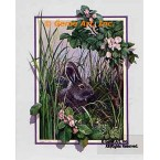 Quiet Moment Rabbit  - ROR110  -  PRINT