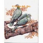 Band-Tailed Pigeons  - #MOR912  -  PRINT