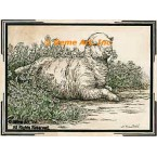 Antique Sheep  - #YOR16  -  PRINT