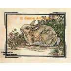 Antique Hare  - #YOR17  -  PRINT