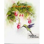 Hummingbird with Fuchsia  - SOR117  -  PRINT