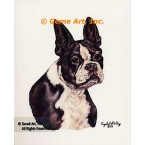 Boston Bull Dog  - #IOR112  -  PRINT