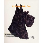 Scotch Terrier  - #IOR113  -  PRINT