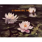 Water Lilies  - #IOR13  -  PRINT