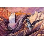 Hawk At Waterfall  - ZOR716  -  PRINT