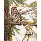 Spotted Owl  - #UOR5  -  PRINT