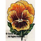 Yellow Gold Pansy  - #TOR136  -  PRINT