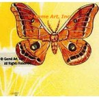 Butterfly  - #TOR2011  -  PRINT