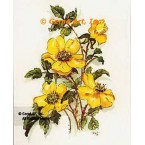 Yellow Wild Rose  - #TORG131  -  PARCHMENT PRINT