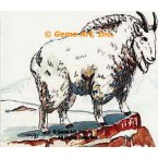 Mountain Goat  - #TORT809  -  PRINT