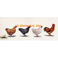 Chickens  - #TOR5068  -  PRINT