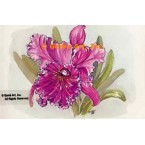 Orchid  - #TOR5107  -  PRINT