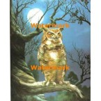 Owl in Moonlight  - XBAN666  -  PRINT