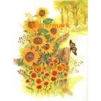 Sunflowers By Wood Fence  - XBSC1575  -  PRINT