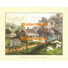 American Homestead Spring  - #XKVH1087  -  PRINT
