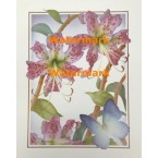 Day Lilies & Butterfly  - #XKVH5432  -  PRINT