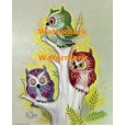 Colorful Owls  - XD7693  -  PRINT