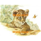Lion Cub and Butterfly  - #XKH8884  -  PRINT