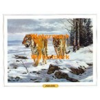The Shores of Lake Baikal  - XBAN1137  -  PRINT