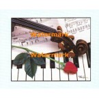 Musical Notes  - #XBSL692  -  PRINT