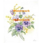 Lavender Pansies and Forsythia  - #XM426  -  PRINT