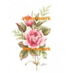 Soft Pink Roses  - XS6534  -  PRINT