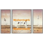 Geese in Flight  - XSTT11029-30-31  -  TRIPTYCH PRINTS